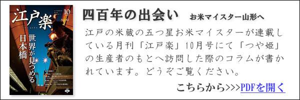 江戸楽コラムPDF