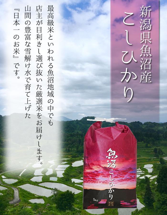 新潟県魚沼産こしひかり