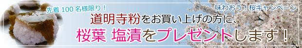味わおう!桜キャンペーン 道明寺粉をお買い上げの方に、桜葉 塩漬をプレゼント