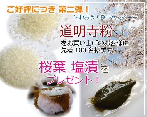 第2弾!道明寺粉をお買い上げの方に桜葉 塩漬けをプレゼント