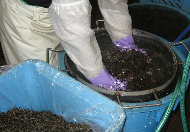 尾道の味 昆布佃煮洗い