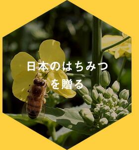 日本のはちみつを贈る