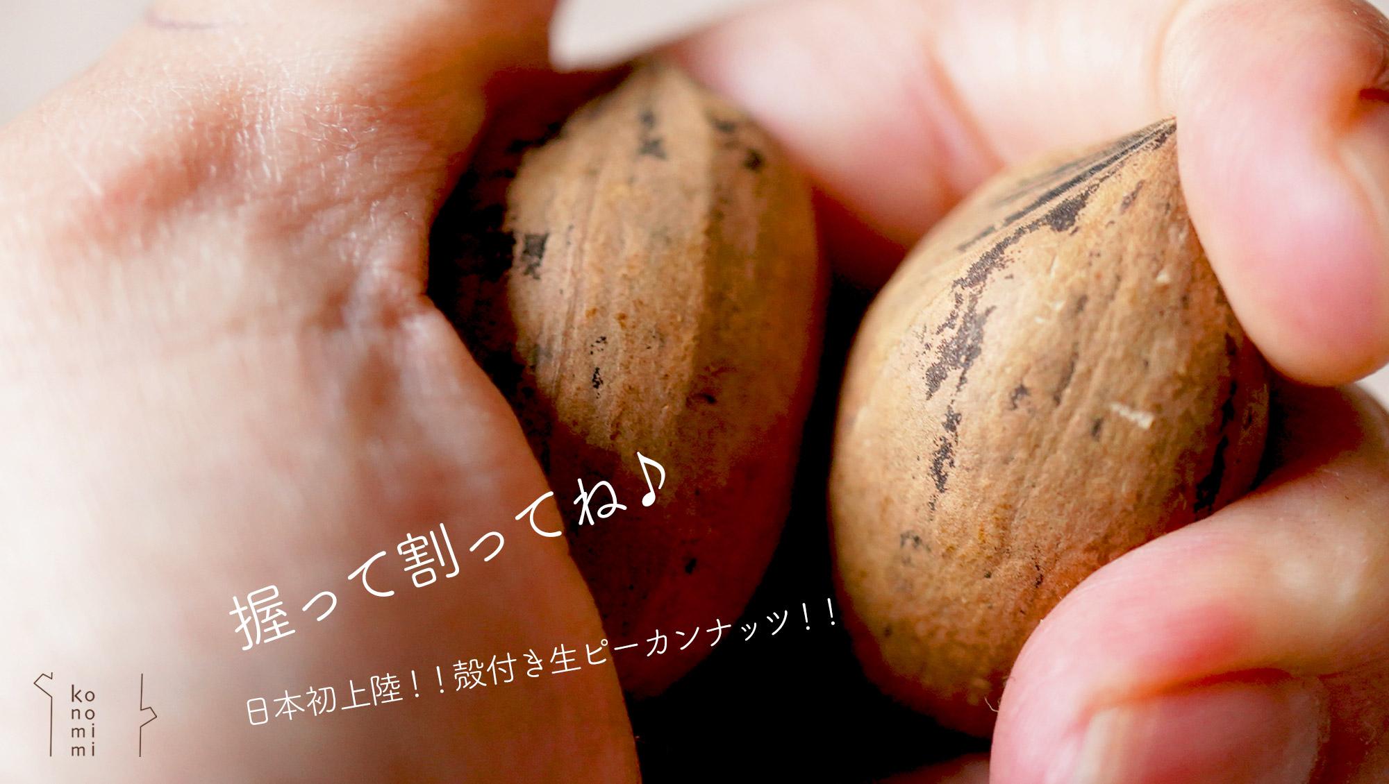 殻付きピーカンナッツ