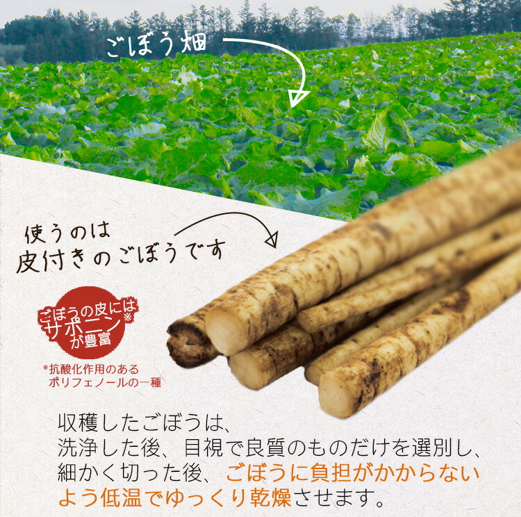 皮付きごぼう サポニン 抗酸化作用 低温乾燥 直火焙煎 香ばしい