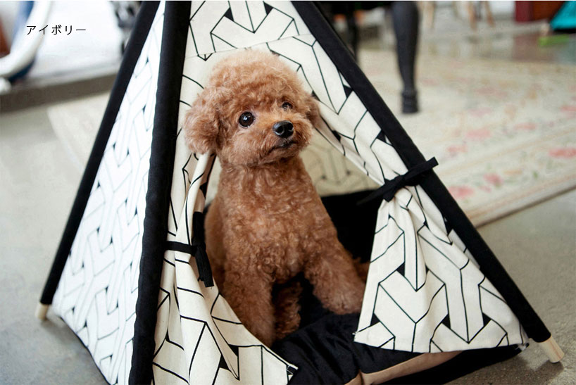 Pet tent & KOREDA | Rakuten Global Market: 11 / 10 10:00-cute pet tent / pet ...