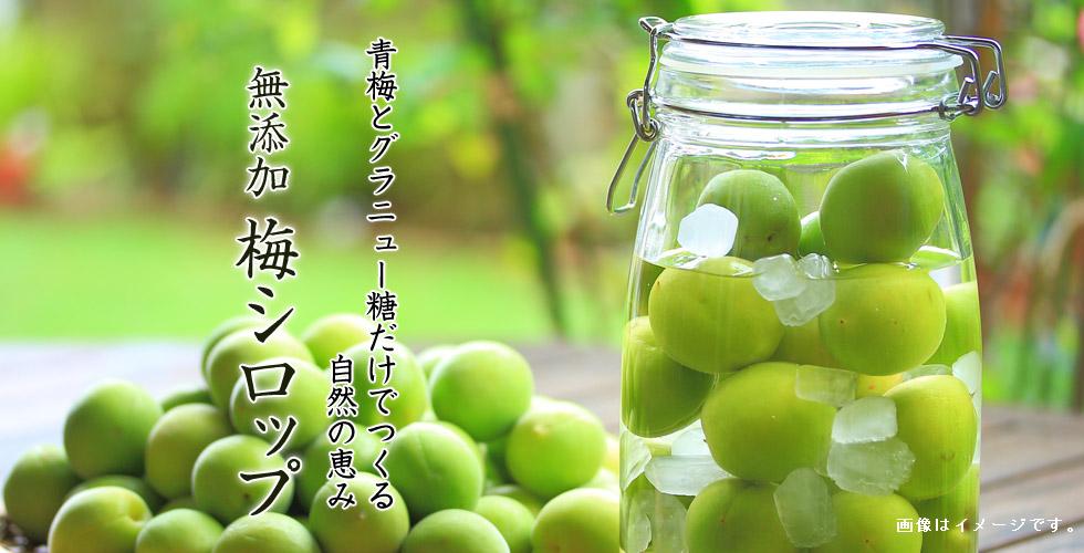 青梅とグラニュー糖だけでつくる自然の恵み、無添加・無着色の安心して飲める梅シロップ