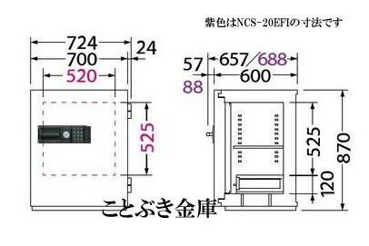 NCS-20ER