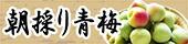 季節商品5月〜6月頃『朝採り紀州南高青梅』