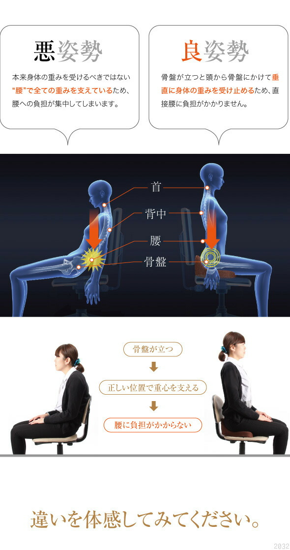 悪姿勢、本来身体の重みを受けるべきではない腰で全ての重みを支えているため、腰への負担が集中しています。良姿勢。骨盤が立つと頭から骨盤にかけて垂直に身体の重みを受け止めるため、直接腰に負担がかかりません。