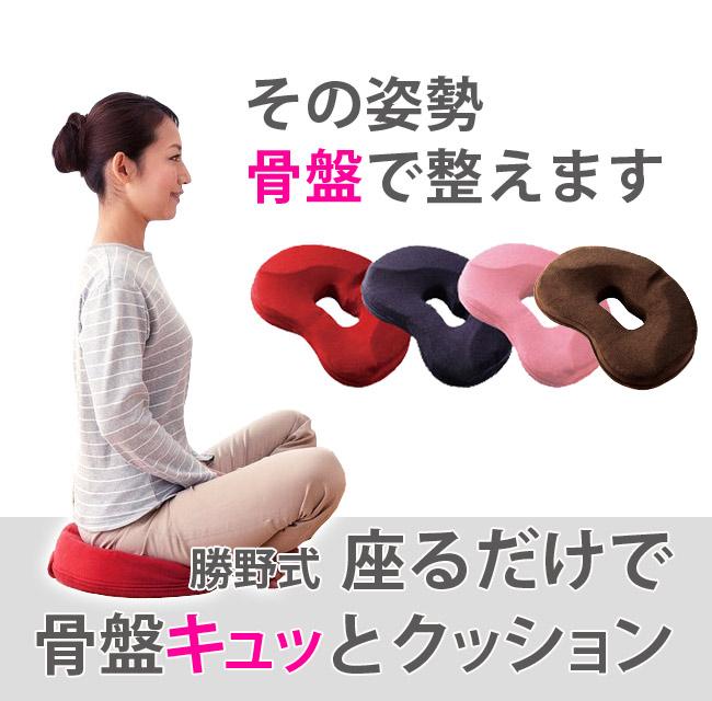 勝野式 座るだけで骨盤キュッとクッション その姿勢骨盤で整えます
