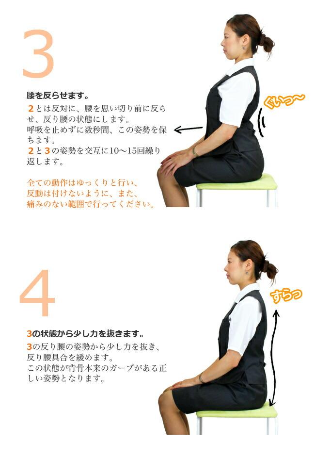 3 腰を反らせます。2とは反対に、腰を思い切り前に反らせ、反り腰の状態にします。呼吸を止めずに数秒間、この姿勢を保ちます。2と3の姿勢を交互に10〜15回繰り返します。全ての動作はゆっくりと行い、反動は付けないように、また、痛みのない範囲で行ってください。 4 3の状態から少し力を抜きます。3の反り腰の姿勢から少し力を抜き、反り腰具合を緩めます。この状態が背骨本来のガーブがある正しい姿勢となります。
