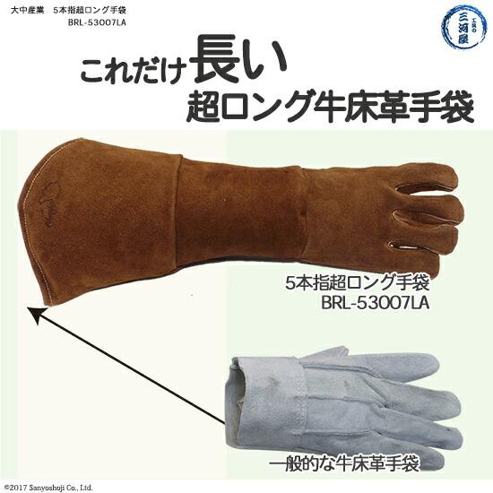 普通の革手袋とロング牛床革手袋との長さの比較