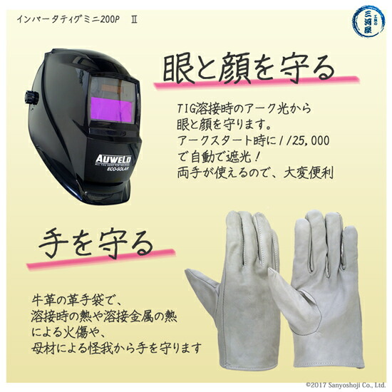 ダイヘン 小型直流パルスTIG溶接機 インバータティグミニ 200PⅡ【送料無料】