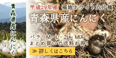 青森県産にんにく・福地ホワイト六片種。まとめ買いで送料お得!