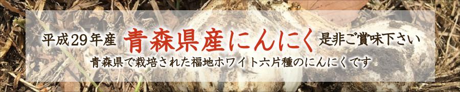 平成29年産新物にんにく、美味しく出来上がりました。青森県で栽培された福地ホワイト六片種のにんにくです。