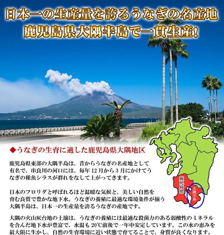 oosumi.jpg