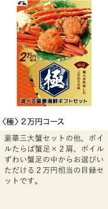 極 2万円コース