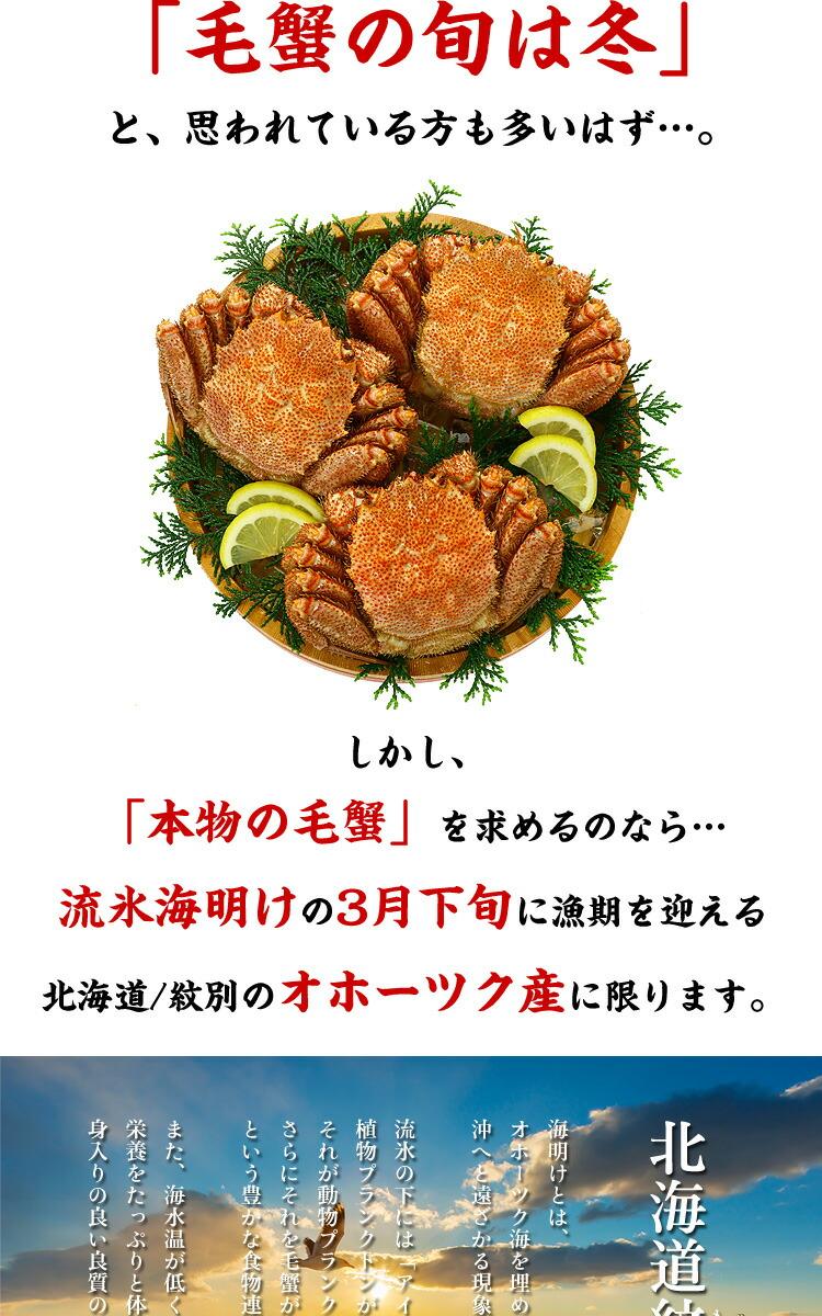 umiake1.jpg