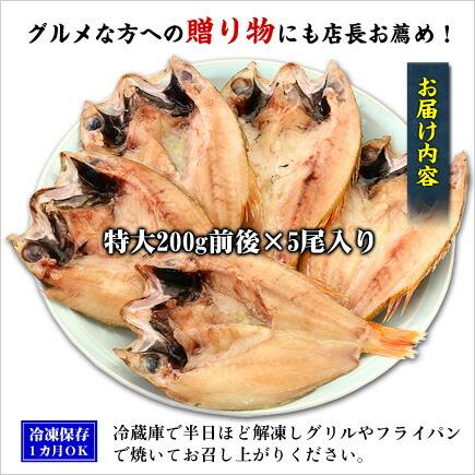 人気の高級魚のどぐろ一夜干し200g前後×5尾入り[送料無料]【ノドグロ】【干物】【一夜干し】