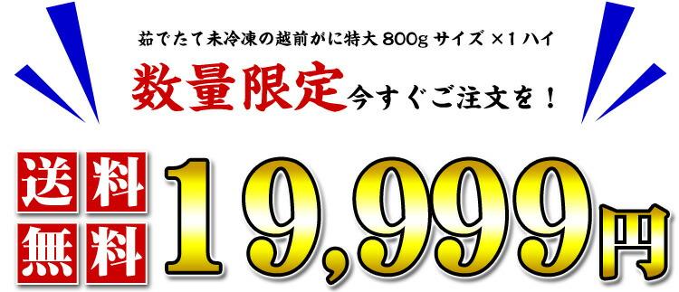 19999.jpg