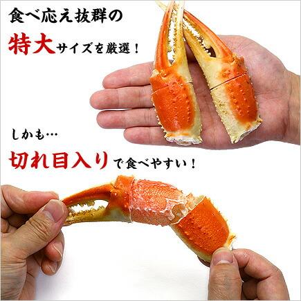 切れ目入り特大ボイルずわいがに爪1kg(解凍後800g)11~20個入り[送料無料]【蟹爪】【カニ爪】【かに爪】【かにつめ】【カニツメ】
