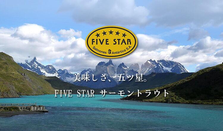fivestar1.jpg