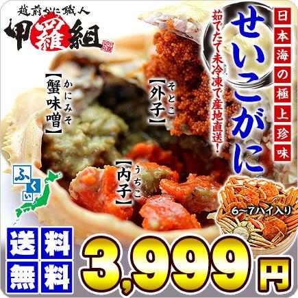 【同梱不可】茹でたて未冷凍の越前松葉せいこ蟹(お試し小サイズ6-7ハイ/2-3人前)※11/6の解禁日以降、入荷次第ご注文順に出荷となります。