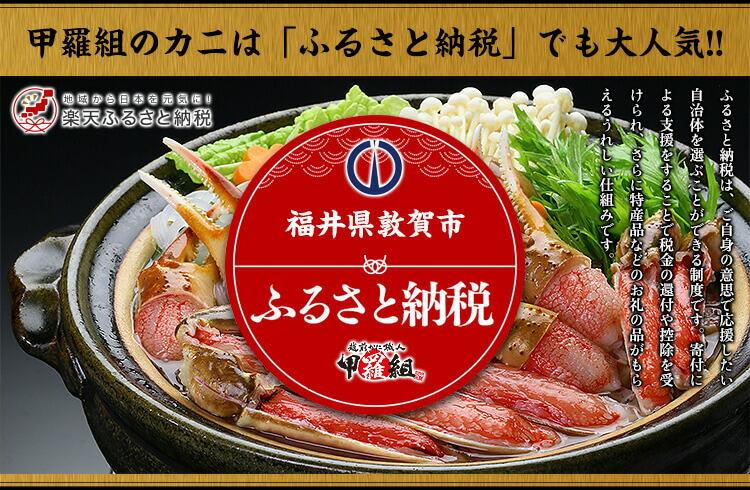 福井県敦賀市ふるさと納税