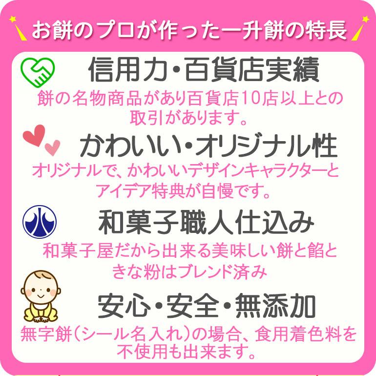 『 お餅 のプロが作った一升餅の特徴 』一升餅 一生餅 誕生餅 東京 おすすめ 人気