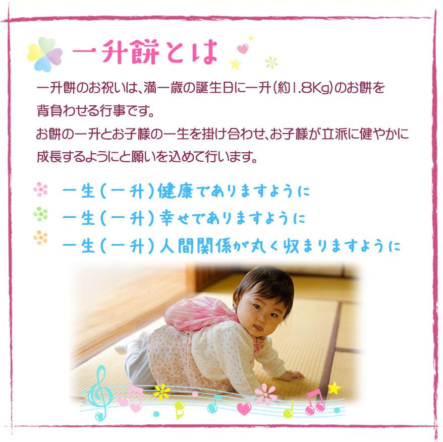 『 一升餅とは 』一升餅 一生餅 誕生餅 東京 おすすめ 人気