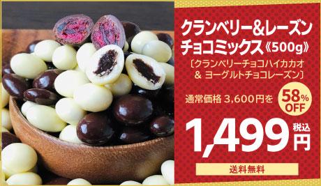 チョコレート クランベリー レーズン チョコ ミックス 500g 送料無料