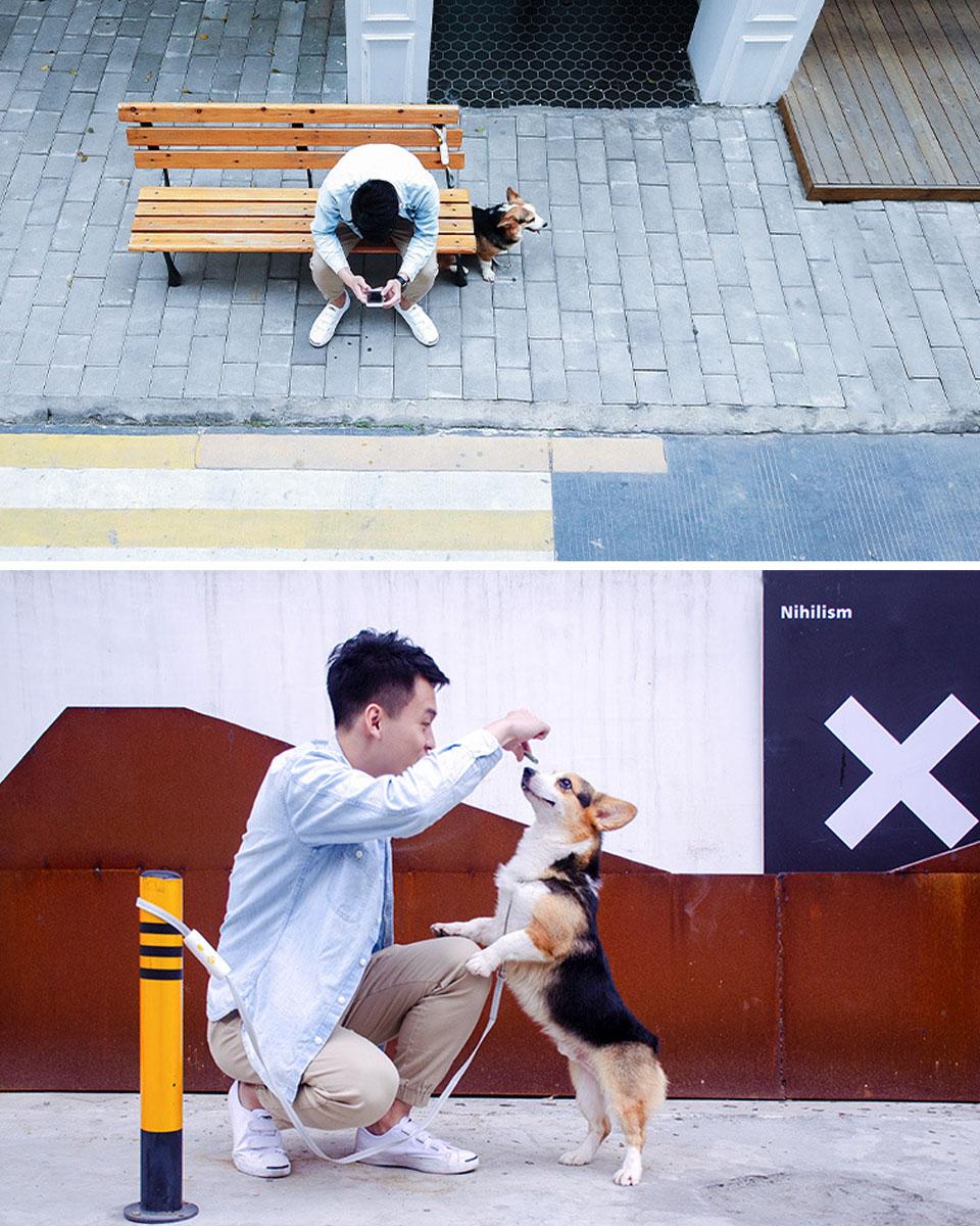 リード 犬 ペット用リード 犬 ペット リード 散歩 カジュアル おしゃれ ドッグ 犬用 お散歩リード ペットリード 係留リード