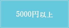 5000以上