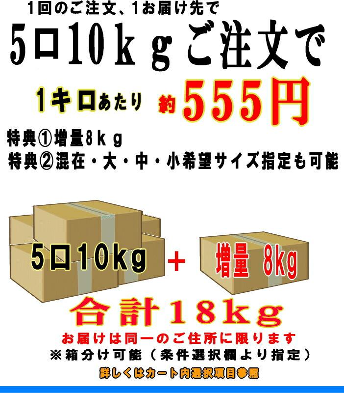 5箱18kg