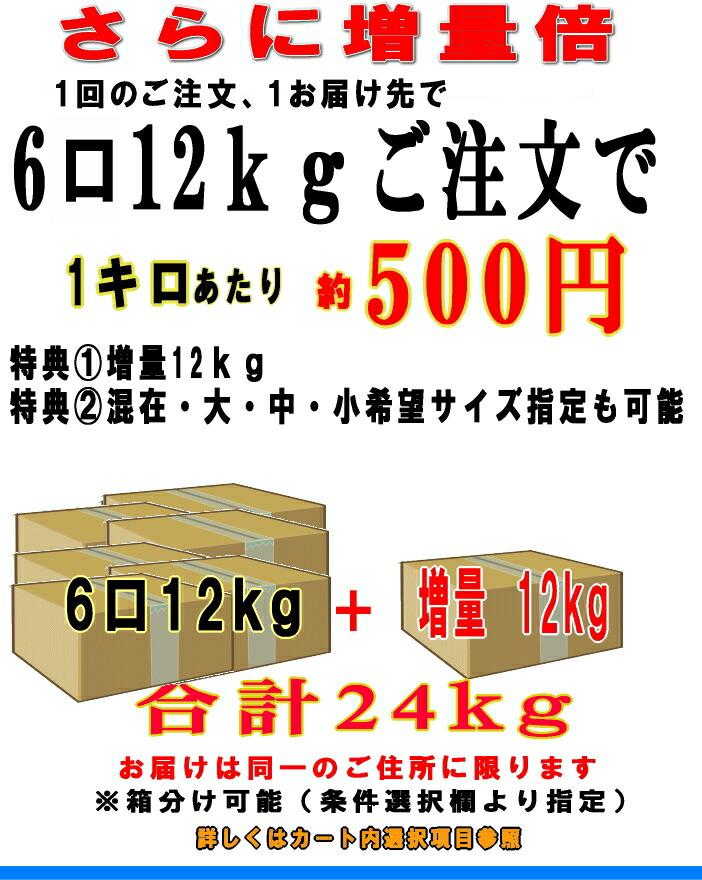 6箱24kg