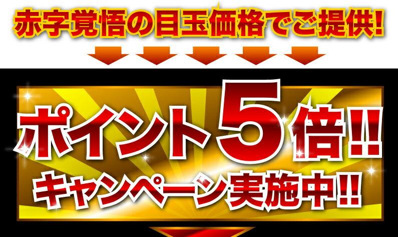 赤字覚悟の目玉価格でご提供!ポイント5倍!!