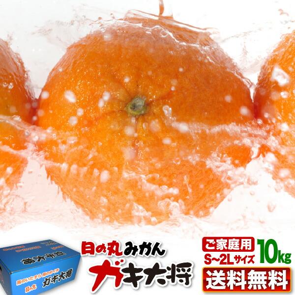 日の丸蜜柑ガキ大将2箱