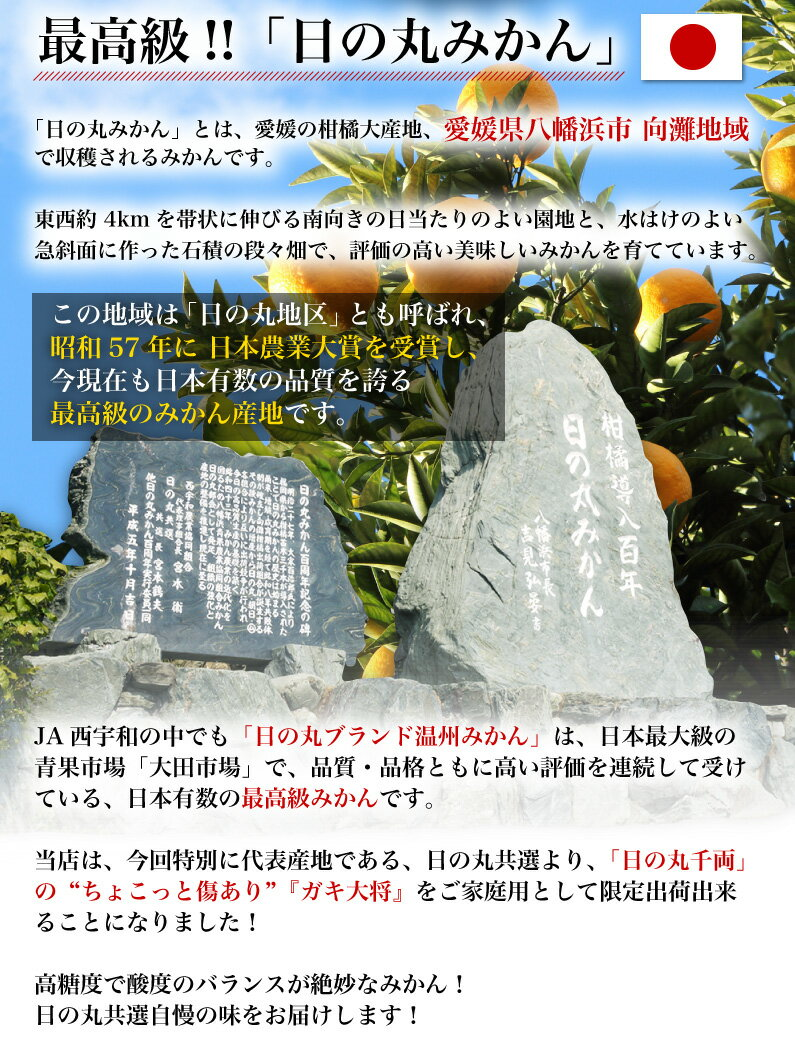日の丸みかんとは、愛媛県八幡浜市向灘地域で収穫されるみかんです。