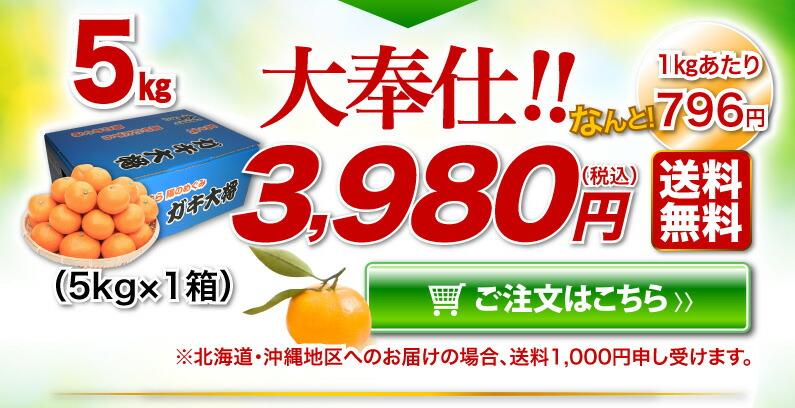 日の丸みかんご家庭用 5kg 大奉仕!!送料無料