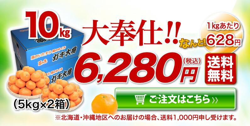 日の丸みかんご家庭用 10kg 大奉仕!!送料無料