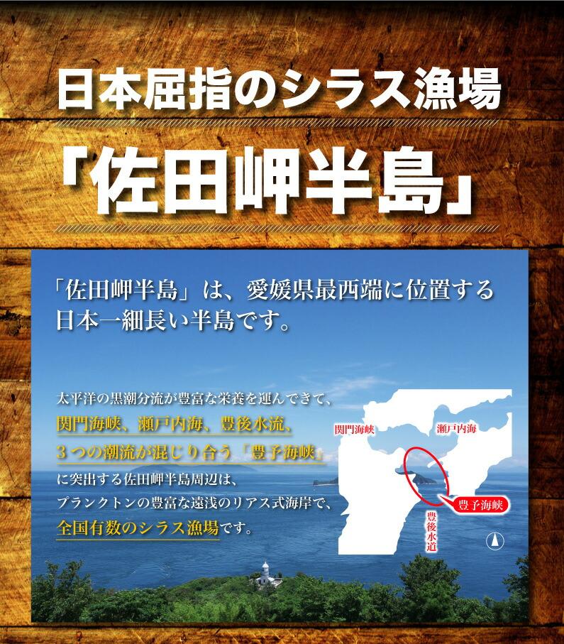 日本屈指のシラス漁場「佐田岬半島」