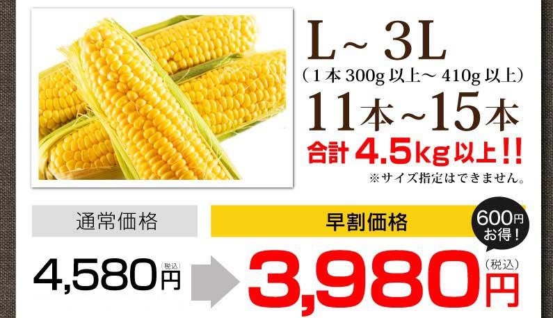 2L〜3L、11本〜13本。通常4,180円が早割価格3,580円