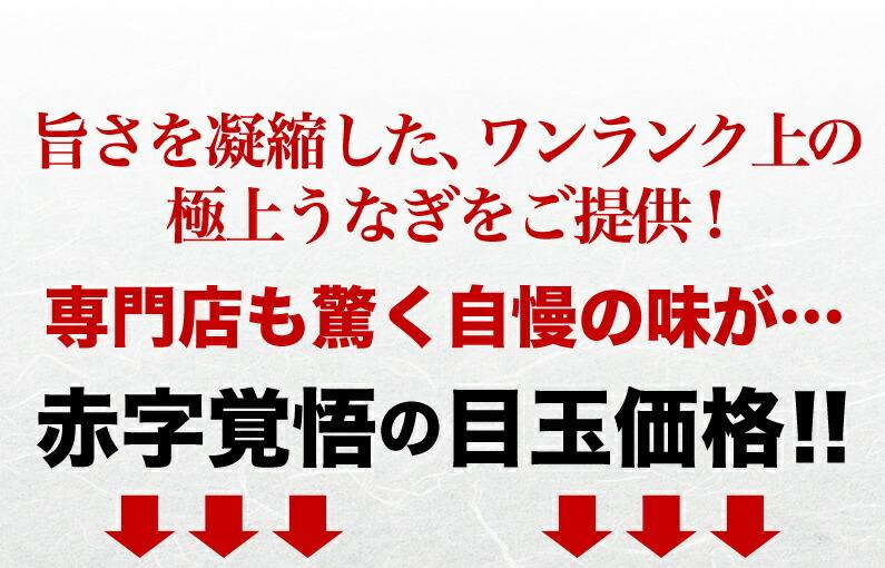 赤字覚悟の目玉価格!!
