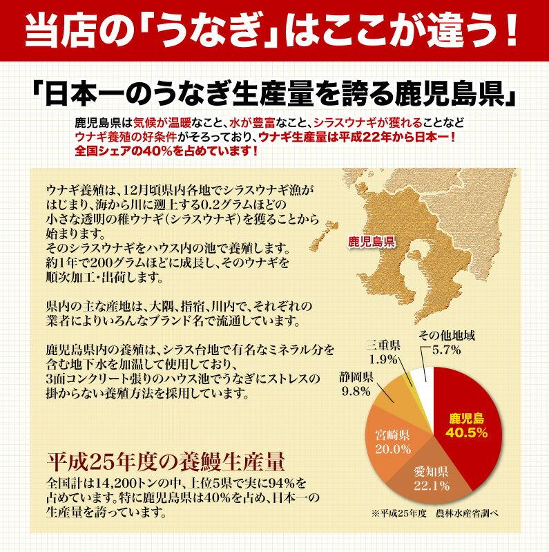 日本一のうなぎ生産量を誇る鹿児島県