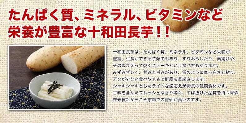 栄養が豊富な十和田長芋!!