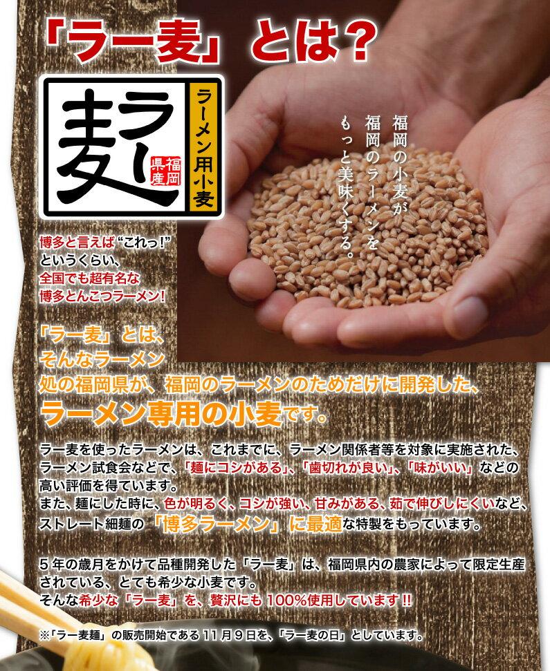 ラー麦とは?ラーメン専用の小麦です。
