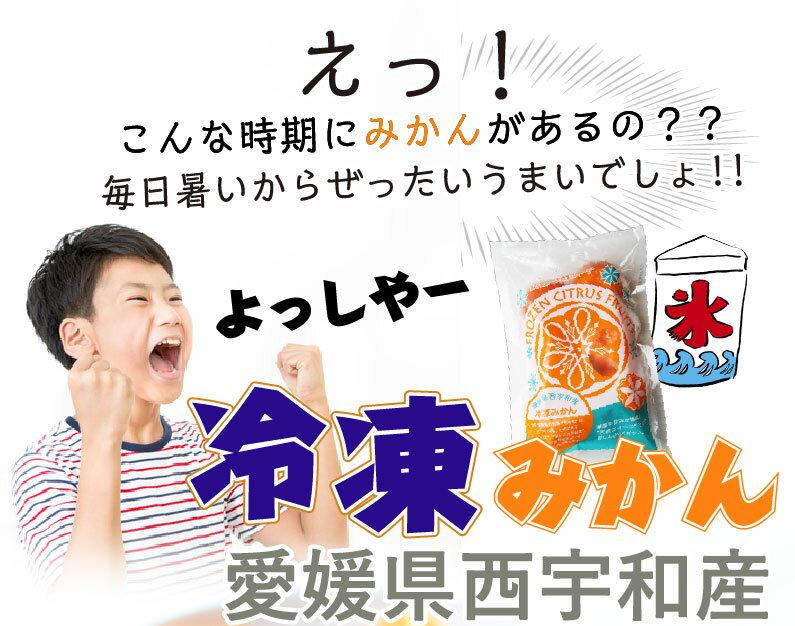 愛媛県西宇和産 冷凍みかん