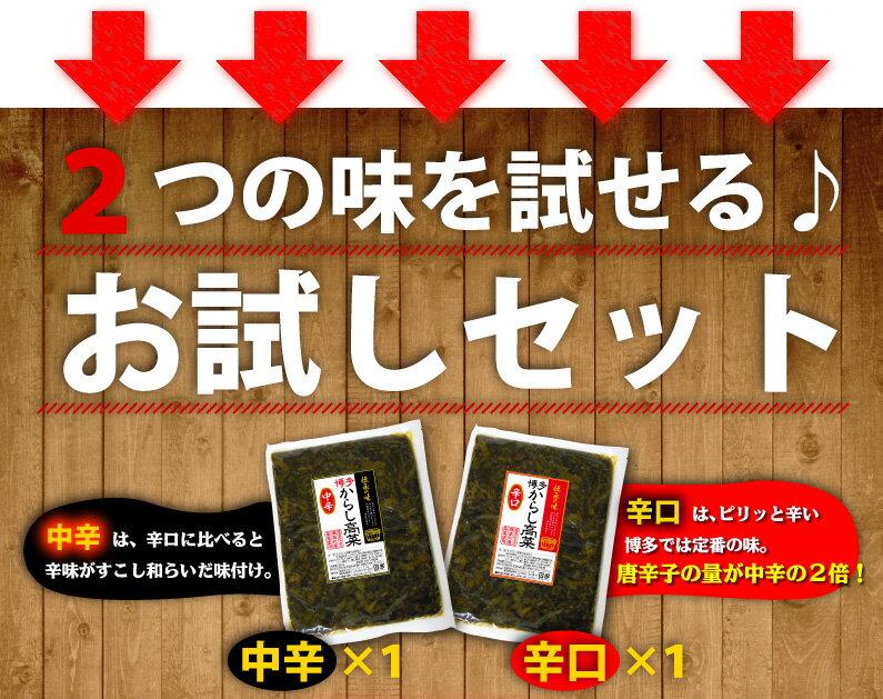 お好きな味を2袋!選べる3タイプ。中辛×2、辛口×2、お試しセット(中辛×1&辛口変える1)