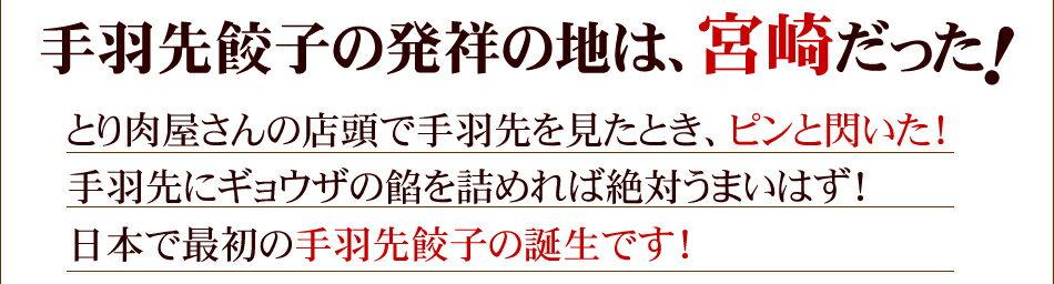 手羽先餃子の発祥の地は、宮崎だった!