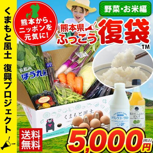 復興福袋 おまかせ野菜・フルーツ10品目 あきだわら5kg